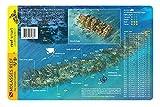 Molasses Reef Key Largo Florida Waterproof Dive & Fish Card
