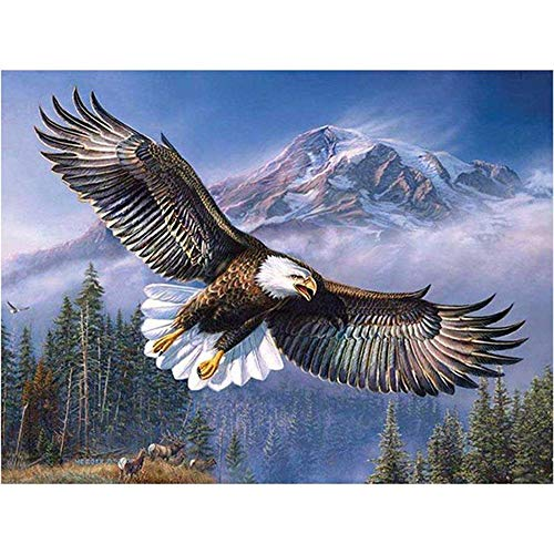 certainPL DIY 5D Diamond Painting by Number Kit, Full Drill Rhinestone Embroidery Arts Craft for Kids/Adults, Soaring Eagle (C)