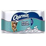 Charmin Freshmates Flushable Wet Wipes, 40 Count (Pack of 12)