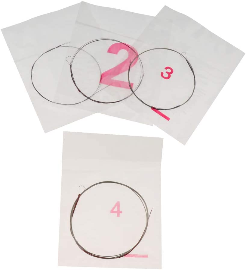 Set of 4 Professional Liuqin Strings Instrument Chinese Lute Guitar Strings