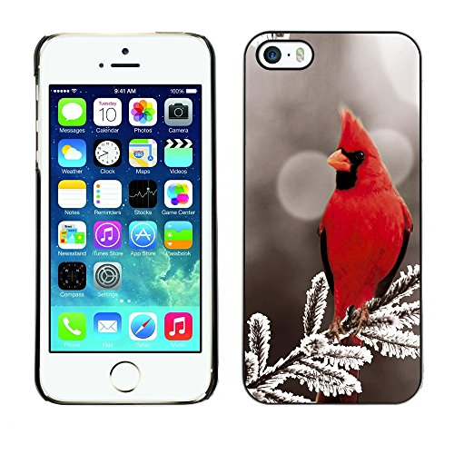 [ For APPLE IPHONE 5 / 5S ][ Xtreme-Cover ][ Coque Rigide Case Cover ] - Majestic Red Bird