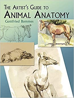 The Artist's Guide to Animal Anatomy (Dover Anatomy for Artists) by Gottfried Bammes (2004-09-17)