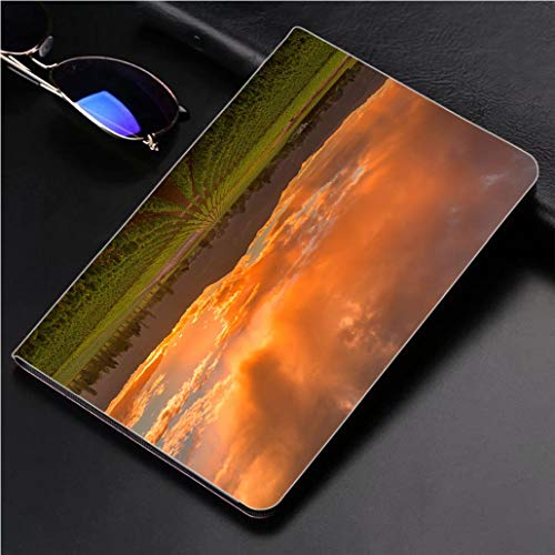 - Compatible with 3D Printed iPad Pro 10.5 Case Napa Valley California Vineyard Landscape Sunset 360 Degree Swivel Mount Cover for Automatic Sleep Wake up ipad case
