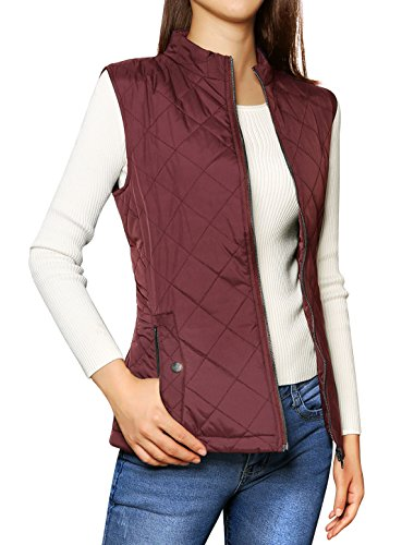 Allegra Woman Collar Quilted Padded product image