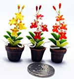 Dollhouse Flower Miniature Oncidium Orchids in Pots Set Made of Artificial Clay Realistic it Very Cute. (3 Pots) by Thai