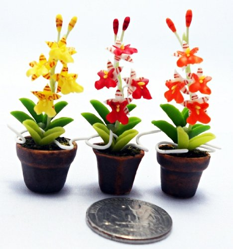 (Dollhouse Flower Miniature Oncidium Orchids in Pots Set Made of Artificial Clay Realistic it Very Cute. (3 Pots) by Thai )