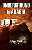 img - for Underground in Arabia book / textbook / text book