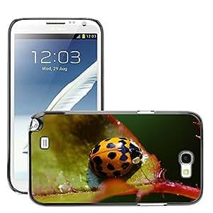 Just Phone Cover Etui Housse Coque de Protection Cover Rigide pour // M00139903 Mariquita Cerrar Insecto Escarabajo // Samsung Galaxy Note 2 II N7100