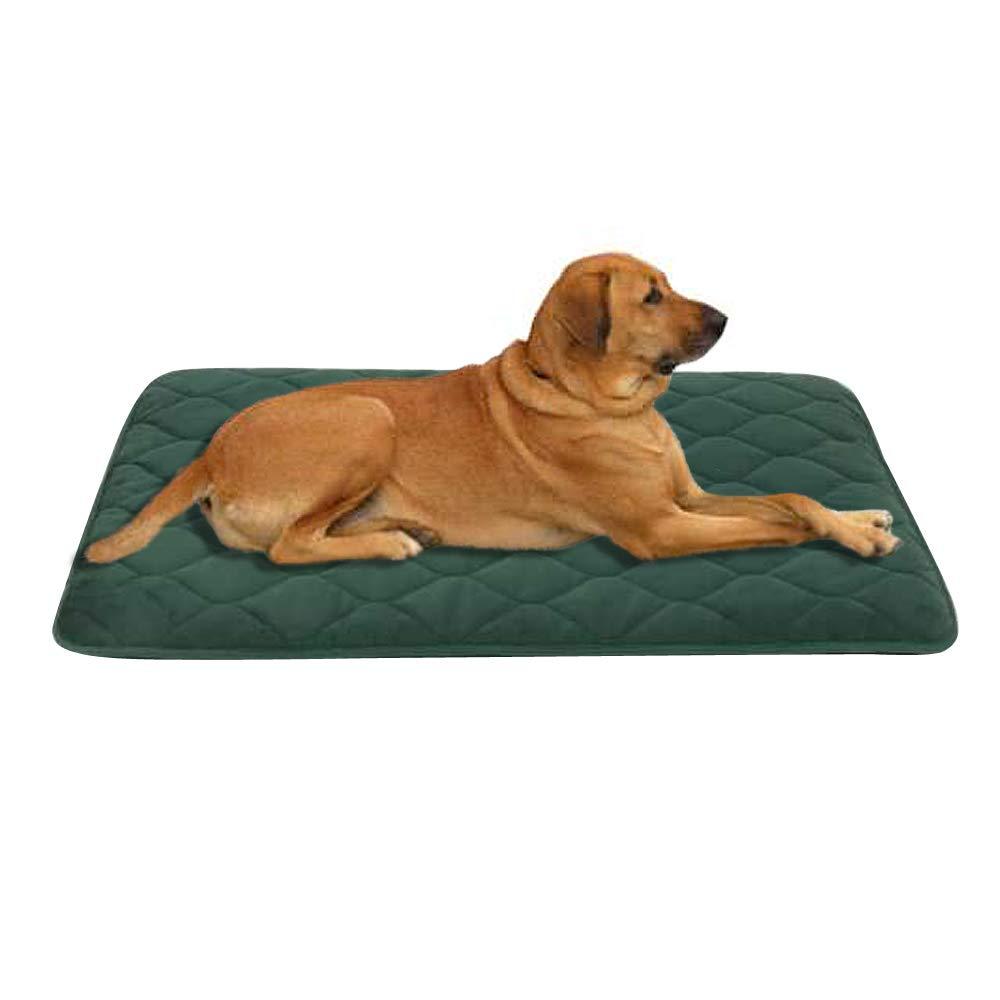 Dark green Large& xFF08;28\ Dark green Large& xFF08;28\ COMFORHOME B&G Dog Bed Washable Anti-Slip Matress Resistance & Durable Soft Velvet Dog Mat (28 inch by 39 inch Dark Green)