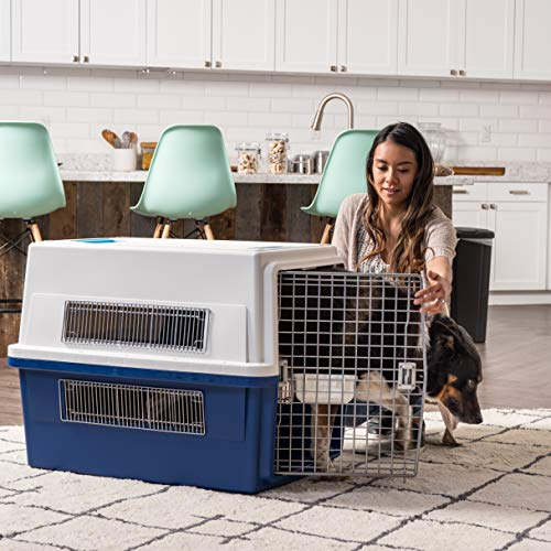 Amazon.com: IRIS Deluxe Pet Travel Carriers, L, Marino: Mascotas
