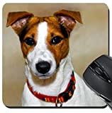MSD Suqare Mousepad 8x8 Inch Mouse Pads/Mat design: 7254790 Cute puppy jack russell with colourful collar