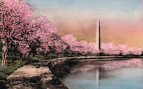 Washington DC - Cherry Blossom View of WA Monument (9x12 Collectible Art Print, Wall Decor Travel Poster)