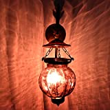 Handmade Vintage Melon Shaped Glass Plum Wall Lighting Lamp Sconces Hanging Bronze Bracket