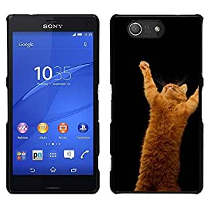 All Phone Most Case / Oferta Especial Duro Teléfono Inteligente PC Cáscara Funda Cubierta de proteccion Caso / Hard Case Sony Xperia Z3 Compact // Orange Cat