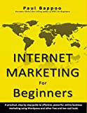 Book cover image for Internet Marketing for Beginners