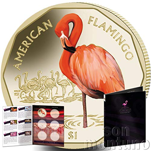AMERICAN FLAMINGO - 2019 British Virgin Islands VIRENIUM One Dollar Coin $1 - First Coin of New Flamingo Series with FREE Starter Album