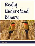 Really Understand Binary