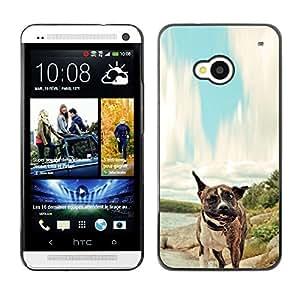 Stuss Case / Funda Carcasa protectora - Pit-Bull Tiger Boxer Dog - HTC One M7