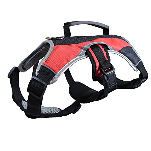 Dog Walking Lifting Carry Harness, Support Mesh Padded Vest, Accessory, Collar, Lightweight, No More Pulling, Tugging or…