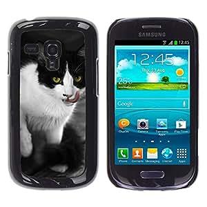 Etui Housse Coque de Protection Cover Rigide pour // M00133882 Gato Animales Gatos Cat Face Fauna // Samsung Galaxy S3 MINI i8190