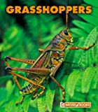 Grasshoppers, Mary Ann McDonald, 159296639X
