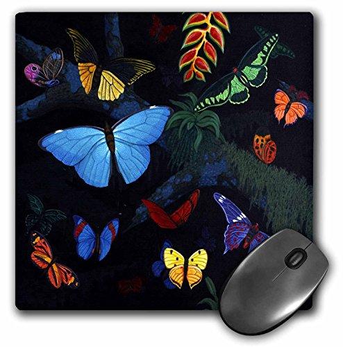 3dRose Inches Rainforest Butterflies mp 3221 1