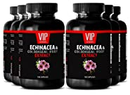 Goldenseal berberine - ECHINACEA AND GOLDENSEAL ROOT EXTRACT - Prostate supplements for men - 6 Bottles 600 Capsules