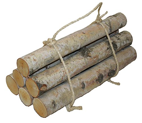 Wilson Enterprises Roped Bundle of Birch Logs (Medium- Set of 6 (1.5-2.5 inch Diameter x 17-18 inch -