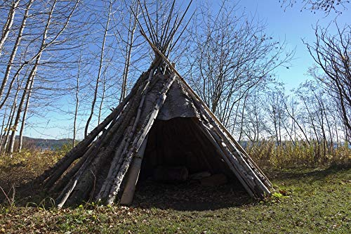 Photography Poster - Teepee, Indian, Birch Bark, 24