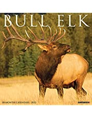 Bull Elk 2022 Wall Calendar