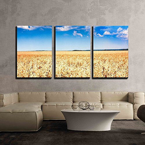 "wall26 - 3 Piece Canvas Wall Art - Wheat Field Under Blue Sunny Sky - Modern Home Decor Stretched and Framed Ready to Hang - 16""x24""x3 Panels"
