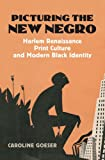 Picturing the New Negro: Harlem Renaissance Print Culture and Modern Black Identity (Culture America (Hardcover))