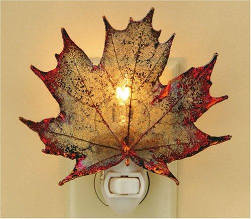 Sugar Maple Night Light (Light Maple Leaf Night)