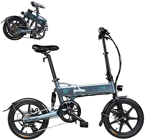FIIDO D2S Folding Electric Mountain Bike