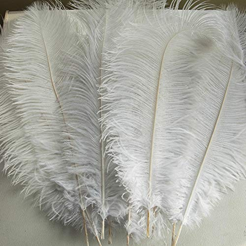 AWAYTR Natural 10-12inch(25-30cm) Ostrich Feathers Plume for Wedding Centerpieces Home Decoration (50pcs, White)