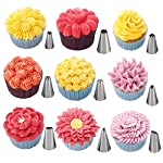 W-Plus 27PCS Cake Decoration Tips Set, Stainless Steel Piping Nozzle Kit, Silicone Pastry Bag, Coupler for Cake Cookies 9 Cake Decoration Tips Set include 24 stainless steel tips and 1 reusable silicone pastry bag ,2 reusable plastic couplers, with which you can create all types of patterns on cake Strong, durable, stainless steel, corrosion resistant, reusable, food grade silicone bag, non-stick, tasteless & non-toxic.FDA and LFGB approved non-toxic silicone and non-corrosive stainless steel are safe for all food preparation needs. Cake decorating tips: Closed Star, Open Star, French, Round, Plain, Leaf, Petal