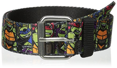 Accessory Innovations Big Boys' Teenage Mutant Ninja Turtles Medium Larger Belt, Multi, One Size