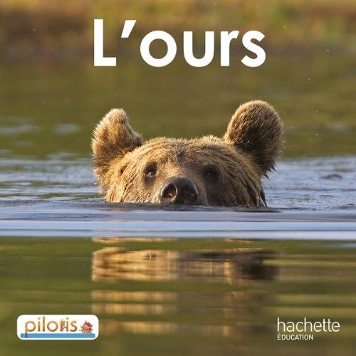 """Résultat de recherche d'images pour """"l'ours pilotis"""""""