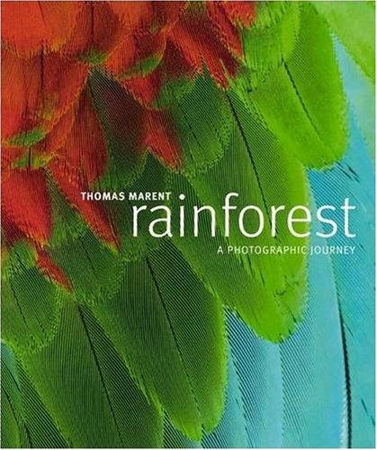 D.O.W.N.L.O.A.D Rainforest DOC