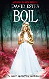 Boil: A Post-Apocalyptic Witch Thriller (Salem's Revenge Book 2)