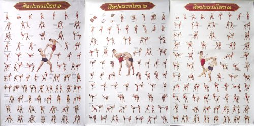Muay Thai Kickboxing Technical Training Education Poster by Siam Trade