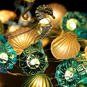 518CxC6C-LL._SS300_ Best Seashell Wedding Decorations