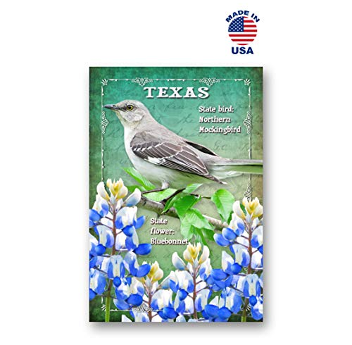 TEXAS BIRD AND FLOWER postcard set of 20 identical postcards. TX state symbols post cards. Made in USA. (Texas State Symbols)