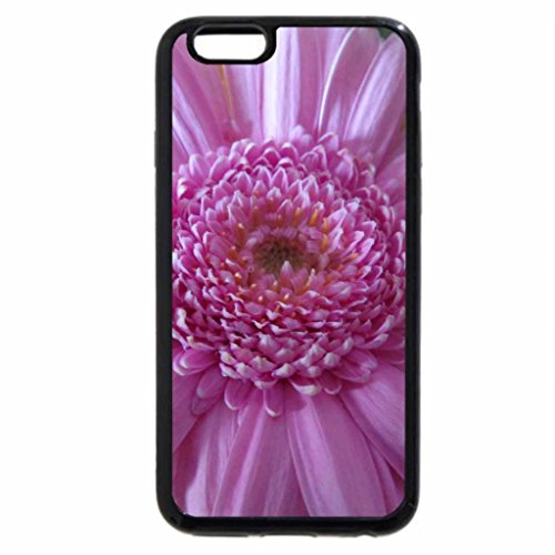 iPhone 6S / iPhone 6 Case (Black) Gerbera in Pink