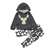 Fheaven 2Pcs Newborn Infant Baby Boy Girl's Winter Deer Hooded Tops+Pants Outfits Clothes Set (3-6M, Gray)