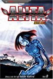 Battle Angel Alita, Vol. 8: Fallen Angel