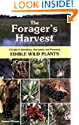 The Forager's Harvest
