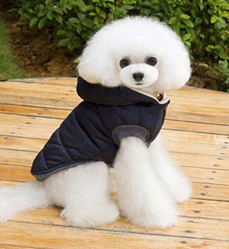 Xinjiener Disfraz Adorable Ropa para Mascotas Otoño e Invierno Gato y Gog Abrigo Cálido Azul Marino L: Amazon.es: Productos para mascotas