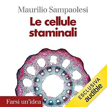 Le cellule staminali (Farsi unidea) (Italian Edition)