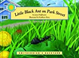 Little Black Ant on Park Street, Janet Halfmann, 1607270021